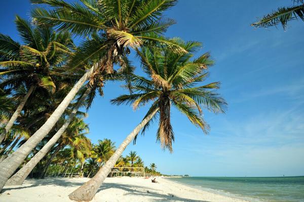 Beautiful Tropical Beaches